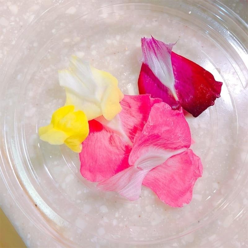 食用花の写真